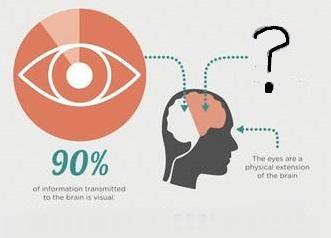 lam_infographic1